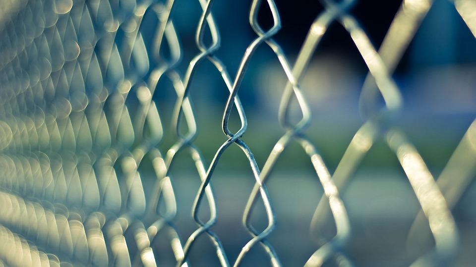 drátený plot
